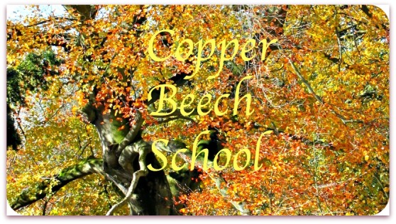 copperbeechschool button