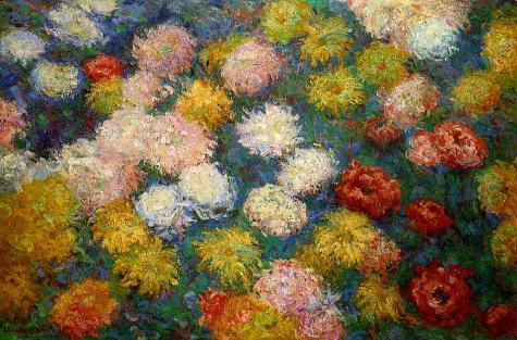 chrysanthemums-1897-1