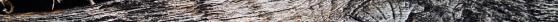 31wood_texture_big_0303.jpg
